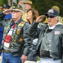 Military and Veteran News