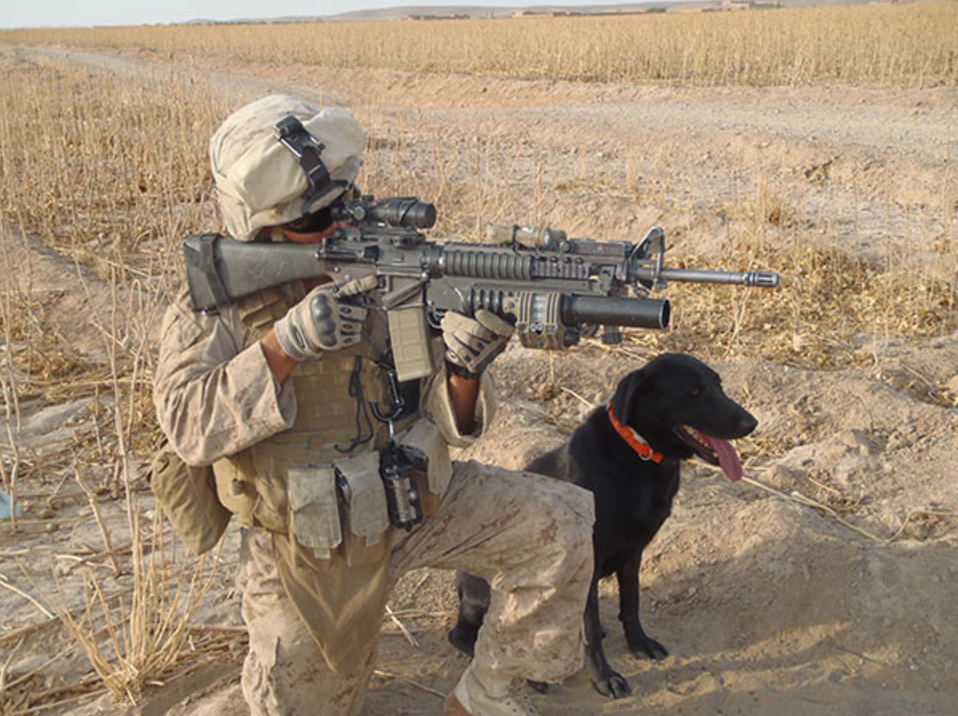 Marine Captain Jason Haag and his service dog