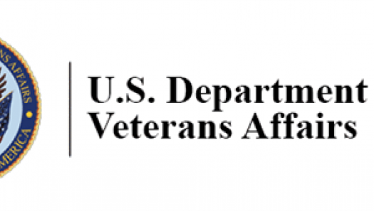 department of veterans affairs