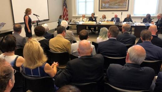 U.S. WWI Centennial Commissioner Dr. Libby O'Connell addresses Commission of Fine Arts (CFA) regarding WWI Memorial design. The CFA gave unanimous approval on design.